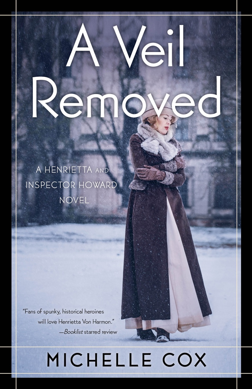 a veil removed by michelle cox author mystery historical fiction book cover